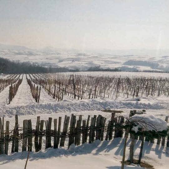 Зимска винска тура